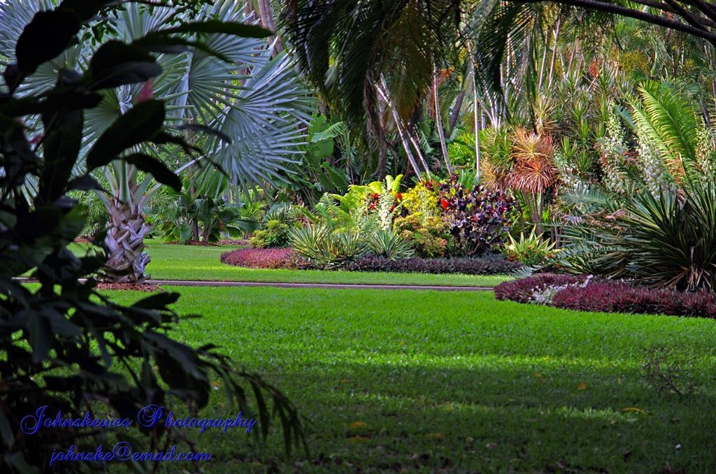 Anderson Gardens Townsville Garden Ftempo