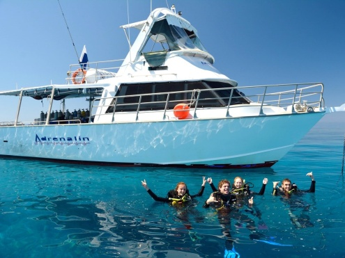 Day Trips to the Great Barrier Reef & World Famous Yongala Wreck